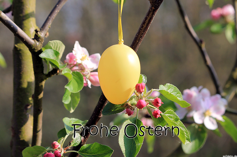 frohe-ostern-bild