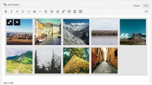 wordpress3.9-neue gallery