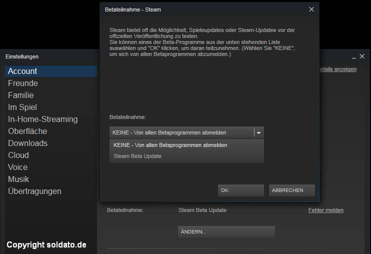 fps anzeige tool